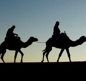Гумилев, Ронсар и пустыня Сахара.